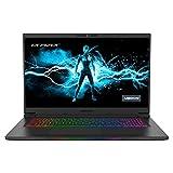 MEDION ERAZER Beast X20 43,9 cm (17,3 Zoll 165Hz) QHD Gaming Notebook (Intel Core i7-10870H, 32GB DDR4...