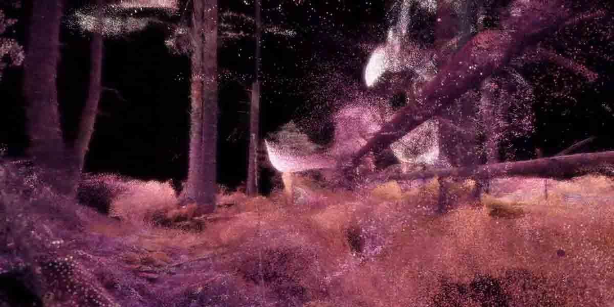 """In der VR-Experience """"n the Eyes of the Animal"""" von Marshmallow Laser Feast wird der Zuschauer zum Tier und streift durch den Wald."""