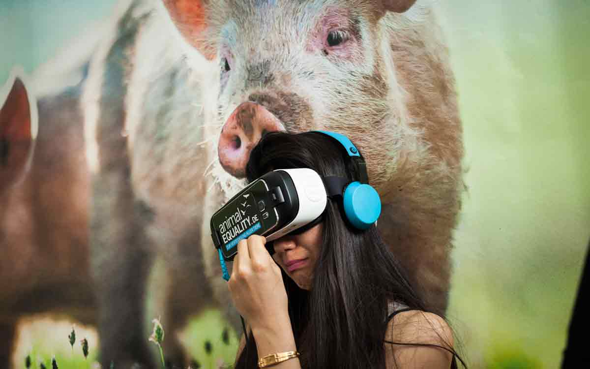 """Die Tierschützer von """"Animal Equality"""" wollen sich das neue Medium 360-Film zunutze machen, um beim Zuschauer Empathie und Verhaltensänderung zu provozieren."""