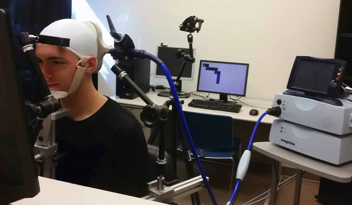 Forscher vernetzten in einem Experiment drei menschliche Gehirne über Lichtsignale: Die Probanden konnten sich zur passenden Ausrichtung eines Tetris-Blocks Kraft ihrer Gehirnwellen koordinieren.