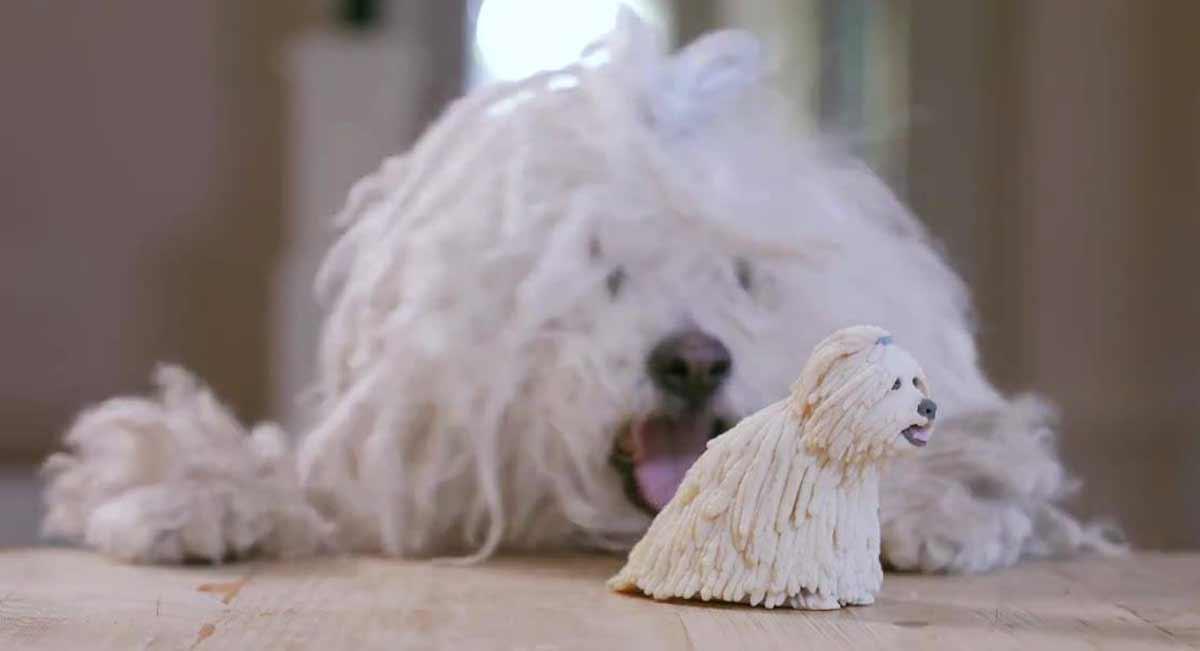 Oculus Rift: Zuckerbergs Hund als 3D-Modell rekreiert