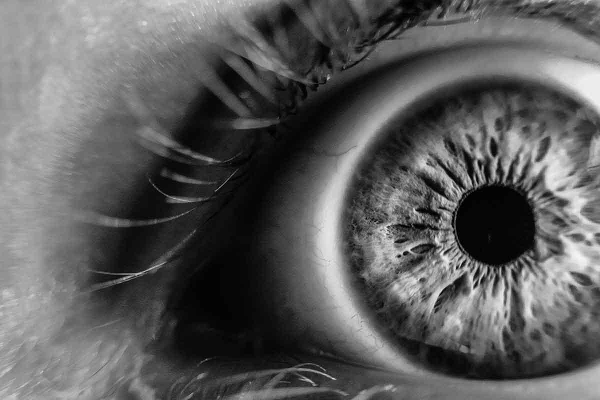 Fokus_Auge