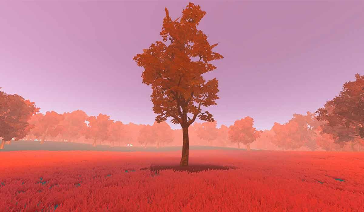 "Virtual Reality: VR-App ""When we die"" simuliert das Sterben"