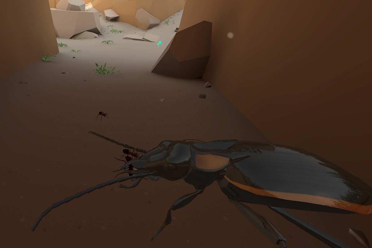 Oculus und BBC Earth versuchen sich an einem neuen Virtual-Reality-Format: der interaktiven Tierdoku. Der erste Versuch ist spannend.