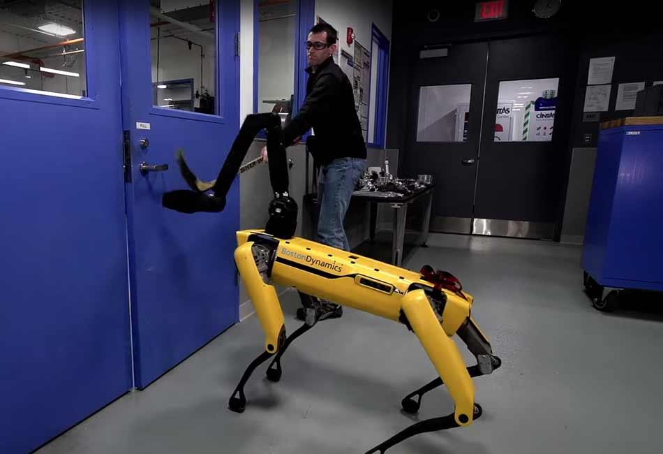 Der Roboterhund Spot Mini lässt sich selbst mit einem Hockeyschläger nicht davon abhalten, eine Tür zu öffnen.
