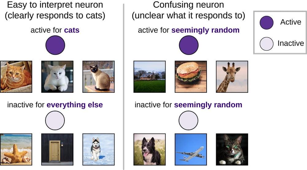 Künstliche Intelligenz: Deepmind zerstört KI-Netz, um es zu verstehen