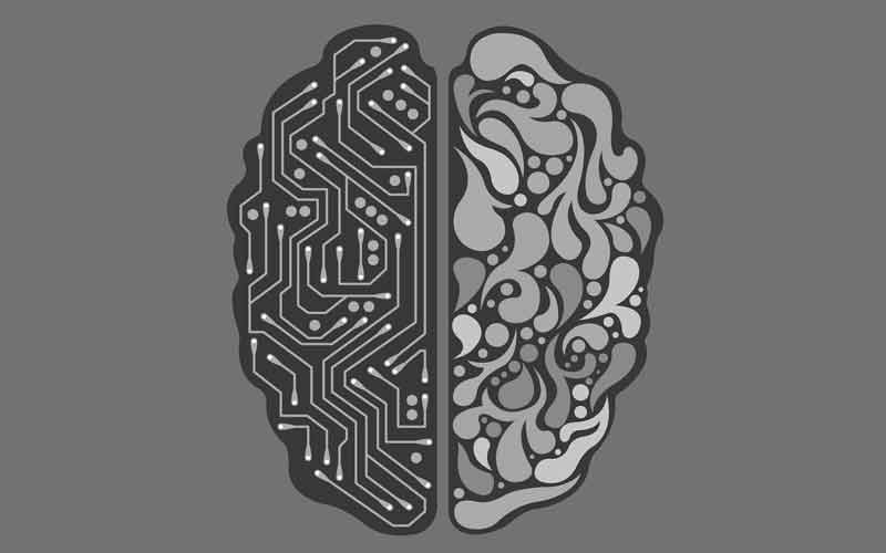 Biologische und künstliche Gehirnhälfte