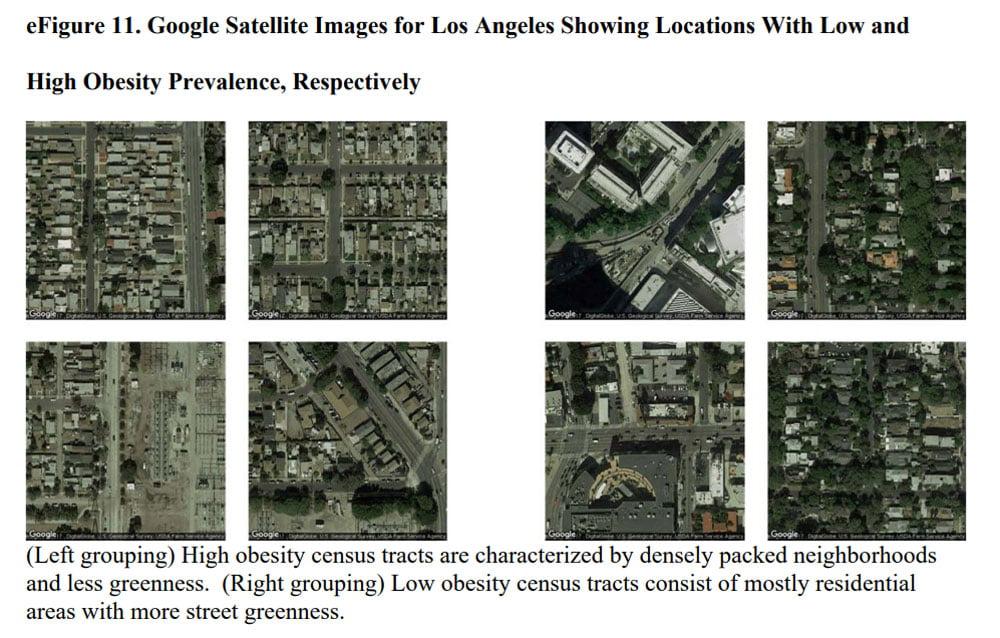 Links eine eng bebaute Gegend mit eher dicken Menschen, rechts viel Grünfläche mit eher schlanken Menschen. Bild: Universität Washington