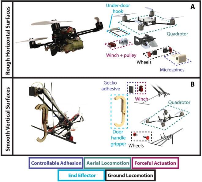 Die Skizze zeigt den Aufbau der Wespen-Drone. Die Winde ist von einer Wespe inspiriert, die Haftbeine schauten sich die Forscher bei einem Gecko ab. Bild: Universität Stanford