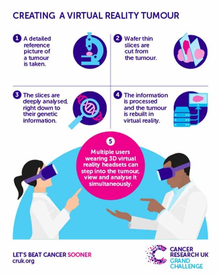 Eine Gewebeprobe wird in hauchdünne Scheiben geschnitten und bis auf die genetische Zusammensetzung analysiert. Die Informationen werden als 3D-Modell aufbereitet, das in VR untersucht werden kann. Grafik: CRUK