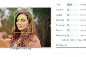 Google demonstriert, wie gut oder schlecht der eigene Such-Algorithmus Bilder versteht.