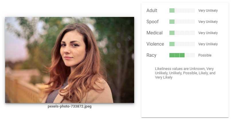 Etwas flott ist das Bild laut der Google-KI, ansonsten aber harmlos. Bild: Screenshot