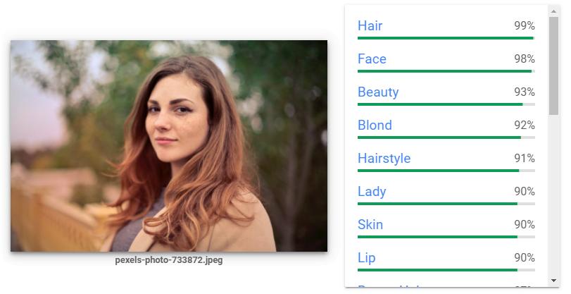 Schönheit, Haarfarbe, Auftreten - auch solche Faktoren untersucht die Bild-KI. Bild: Screenshot