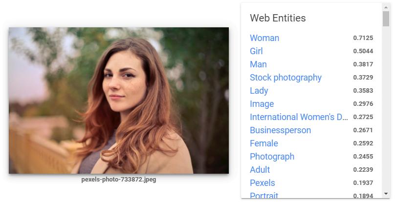 Zum Bildmotiv passende Web-Begriffe. Bild: Screenshot