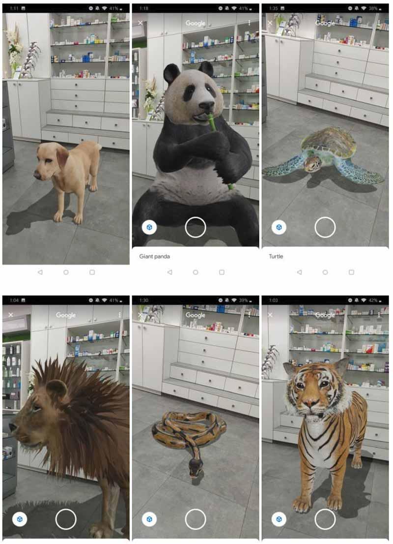 Googles digitaler Zoo. Bild: Android Police
