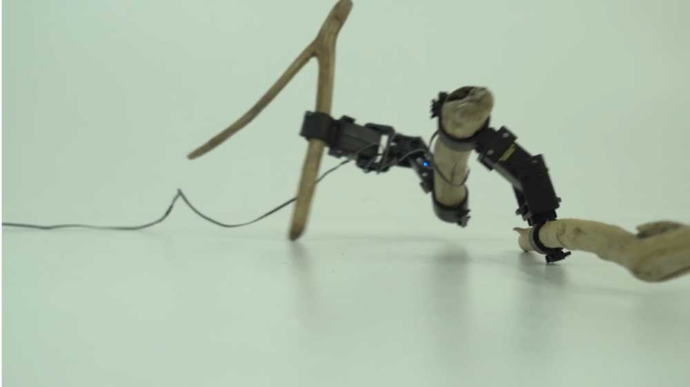 | Twigs Roboter