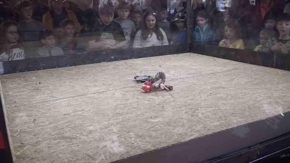 KI-Panne bei Youtube: Am Montag markierte ein Youtube-Algorithmus Roboterkämpfe als tierquälerisches Bildmaterial.