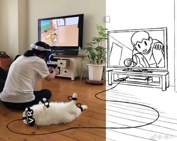   Haustiere in VR