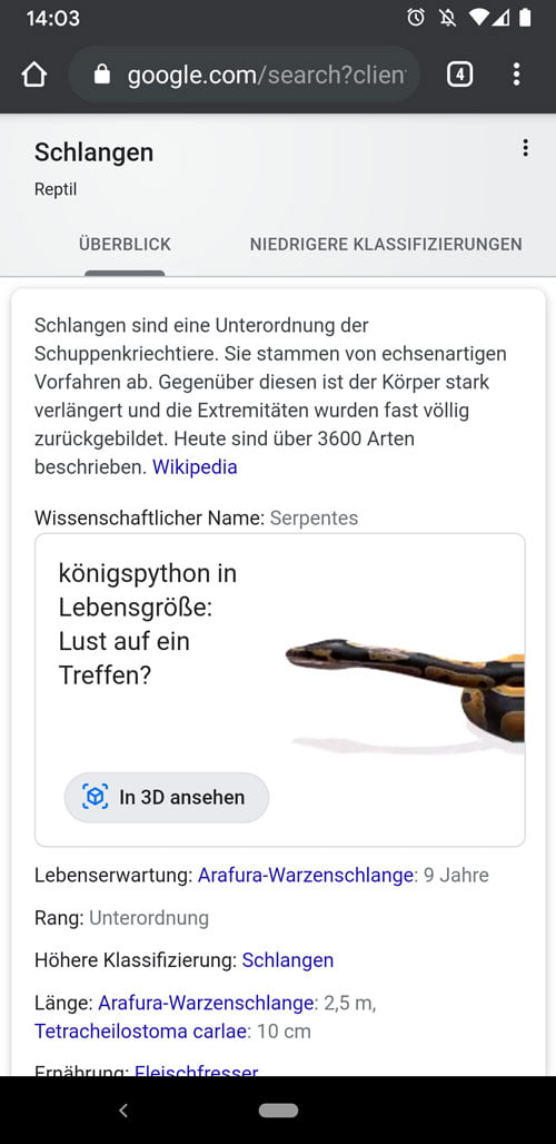 Googles AR-Suchergebnisse sind jetzt in Deutschland verfügbar. Bild: Screenshot