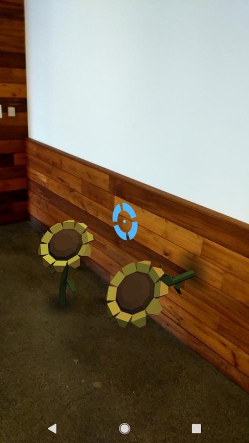 Eine Sonnenblume wächst aus dem Boden, die andere aus der Wand. Bild: Google