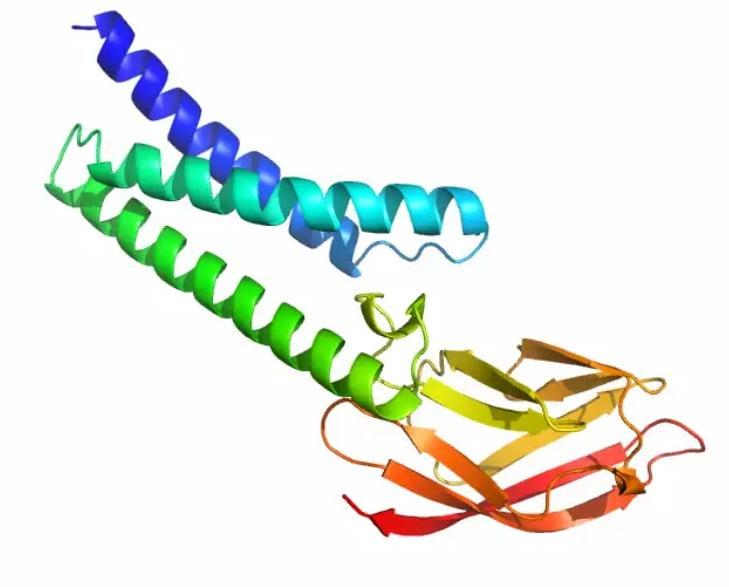 Deepminds KI-Software Alphafold berechnete mögliche Proteinstrukturen des Coronavirus. Bild: Deepmind