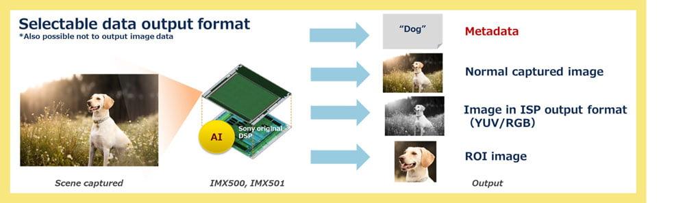 Die Kombination aus KI-Chip und Pixelchip erlaubt verschieden Ausgaben. Die Ergebnisse von KI-Analysen gibt der Chip als Metadaten aus. Bild: Sony.