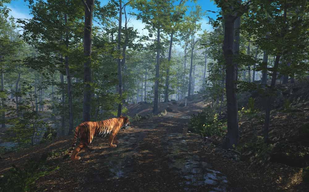 Tiger-King-Star (?) Carole Baskin will euch jetzt sogar in VR erklären, weshalb man Tiger nicht züchten sollte.