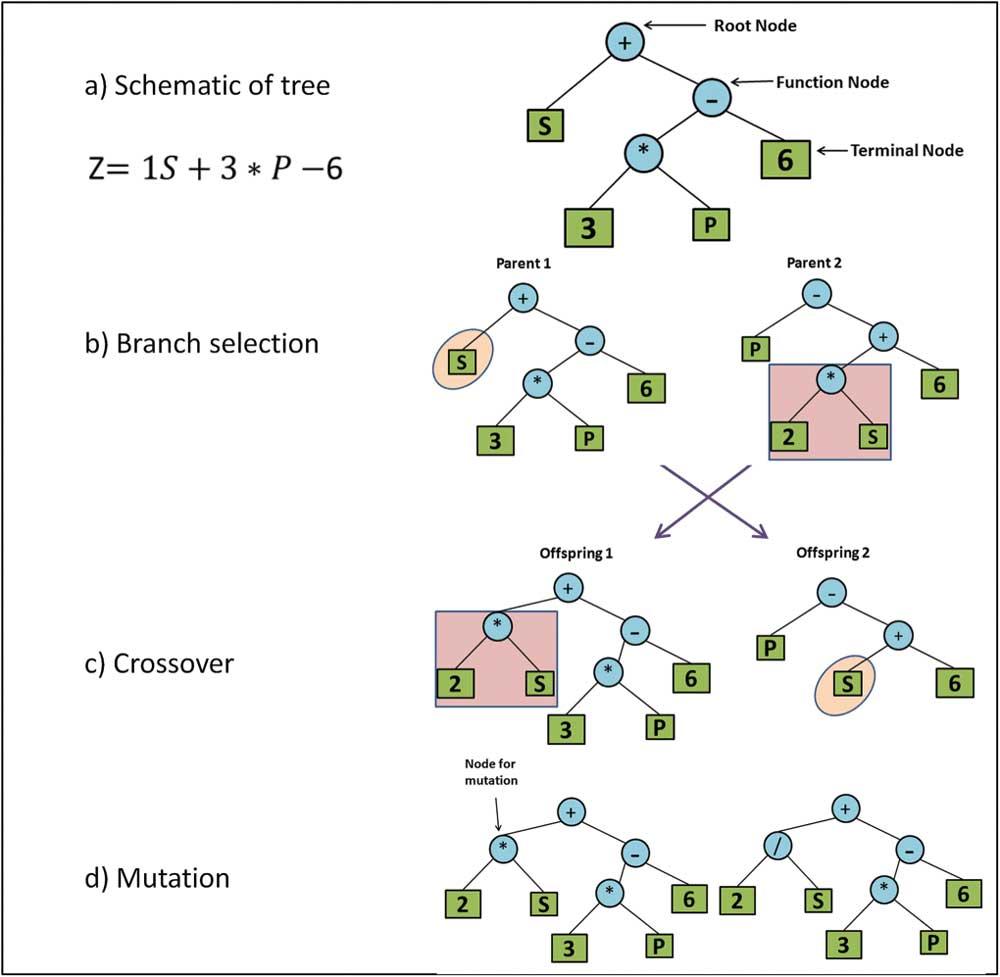 Die symbolische Regression ist ein genetischer Algorithmus der durch Auslese und Mutation nach der perfekten mathematischen Beschreibung eines Datensatzes sucht. | Bild: Vyas et al.