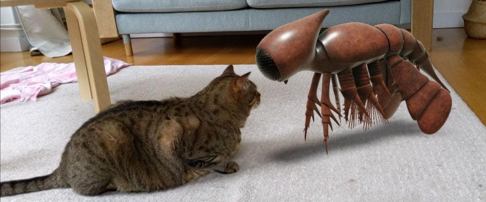 Eine Katze sitzt einem AR-Wesen gegenüber.