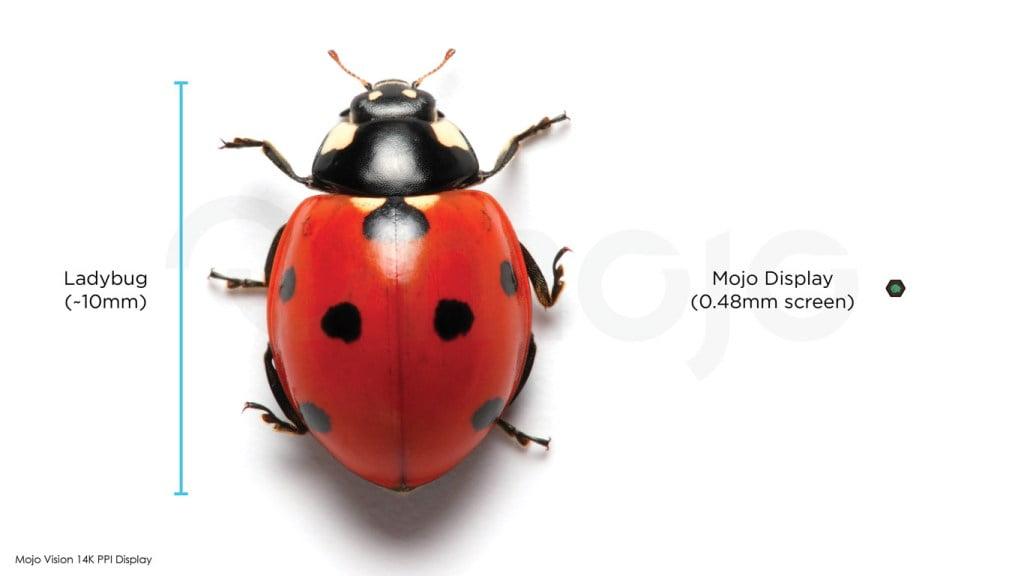 Das Display der Mojo-Kontaktlinse ist extrem klein. | Bild: Mojo Vision