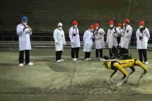 Robo-Hund Spot von Boston Dynamics hilft bei Forschungsarbeiten in Tschernobyl.