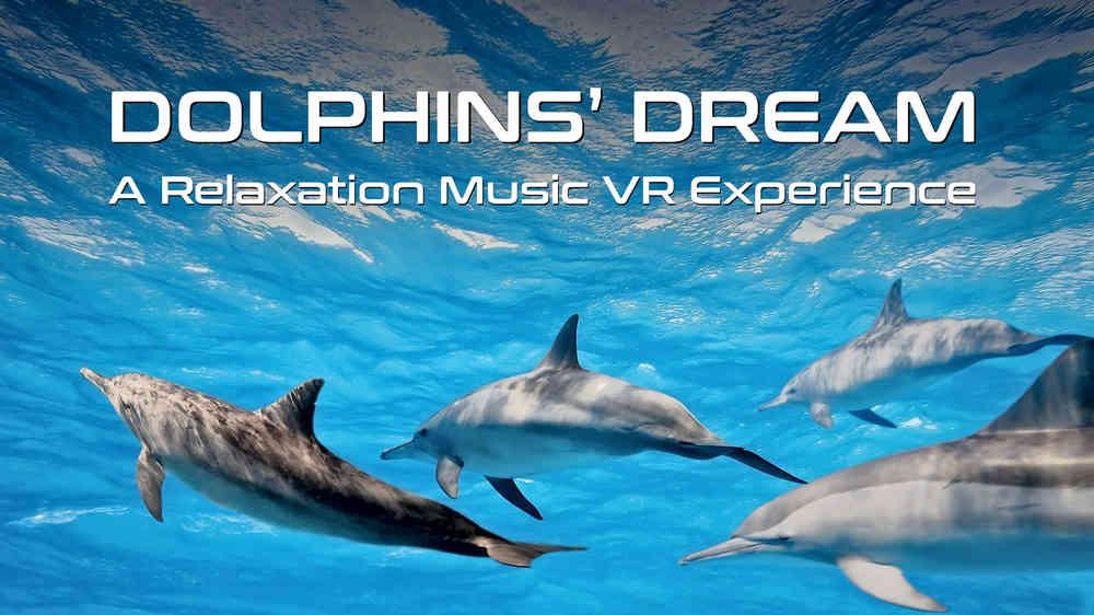 Delfine im blauen Wasser in der VR-Erfahrung Dolphin's Dream