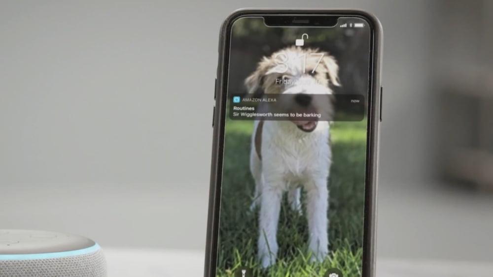 Alexa lässt die Hunde los: Sprach-KI wird zur Alarmanlage