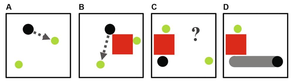 Vier Stufen des Robotertrainings