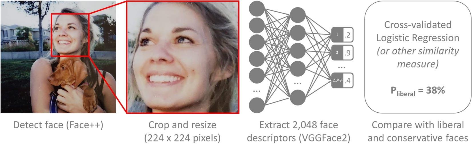 Bevor die Bilder in das neuronale Netz gegeben wurden, zoomte eine Software auf das Gesicht ein, um Umgebungsparameter so gut es geht zu reduzieren. | Bild: Michael Kosinski