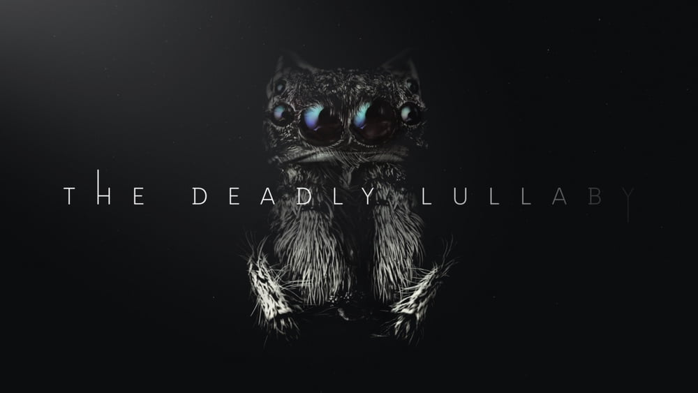 Micro_Monsters_The_Deadly_Lullaby_Spinne