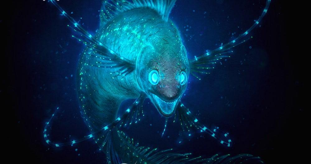 Biolum_Fisch