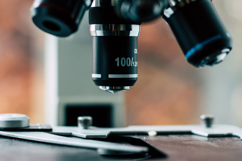 Deeptrack 2.0: KI soll digitale Mikroskopie revolutionieren