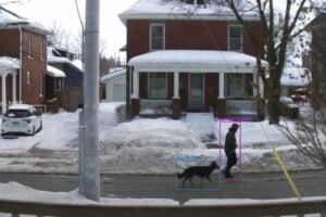 Ein Hund mit Mann auf der Straße mit Bounding-Boxen umlegt von einer Bildanalyse-KI