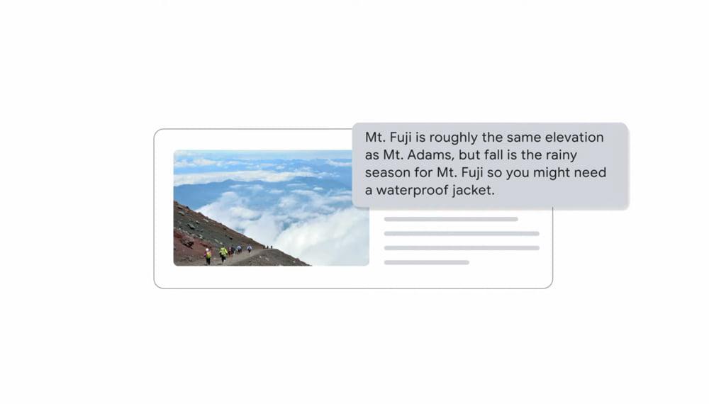 Bild und Textantwort von MUM