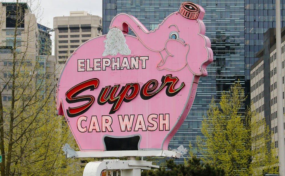   pinker elefant unsplash