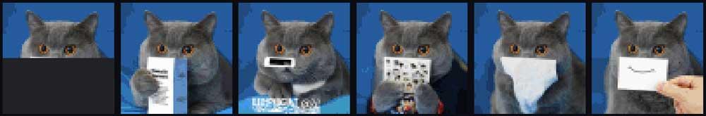 Wenn sich eine KI den Rest einer Katze vorstellt ... | Bild: Open AIs KI