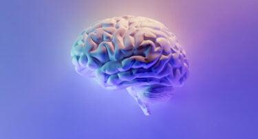 Neurograins: Die Zukunft des Gehirn-Computer-Interface?