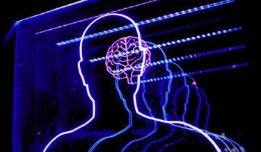 Bio-Neuron vs. KI: Schlägt die Natur die Maschine?