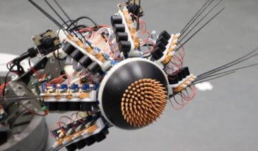 Human Brain Project: Neuroroboter zeigt den Vorteil biologischer Gehirne