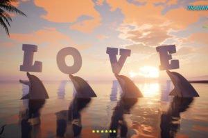 Vier Delphine mit Buchstaben auf den Nasen
