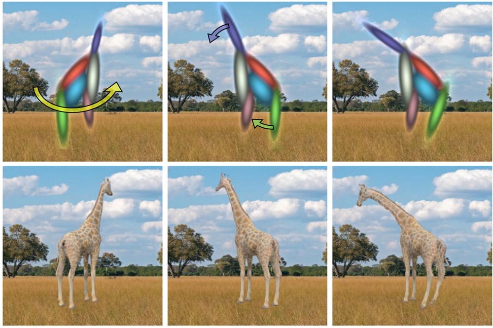 Oben 3D-Giraffen-Repräsentationen unten 3D-Giraffen